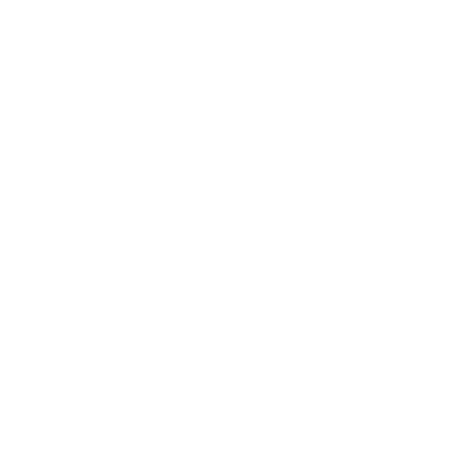 Hotel Leads Logo